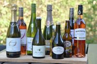 Idag är bra alkoholfria drycker med vuxensmak en given del av varje sammankomst där alkohol serveras. Mikael Mölstad har testat ett antal och valt ut de elva bästa i olika kategorier.