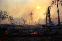 I år har bränderna i Amazonas varit de mest omfattande på minst ett decennium. Bild från Brasilien i augusti.