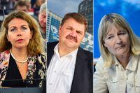 Cecilia Wikström (L), Peter Lundgren (SD) och Marita Ulvskog (S) tillhör de EU-politiker som inte redovisat sina kvitton.