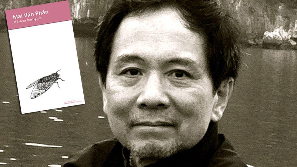 Den vietnamesiske poeten Mai Van Phan, född 1955, har sedan debuten 1992 hunnit ge ut så många som fjorton diktsamlingar. 2017 tilldelades han Cikadapriset, instiftat till Harry Martinsons minne.