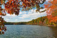 Walden Pond i Concord, Massachusetts.