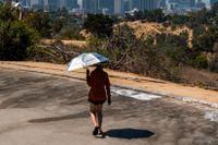 Sydvästra USA har återigen drabbats av en värmebölja.