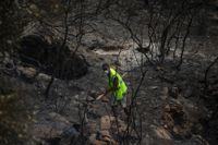 Kraftiga regn har underlättat brandbekämpningen i sydvästra Turkiet.