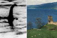 Bild som sägs visa odjuret/Loch Ness-sjön i Skottland.