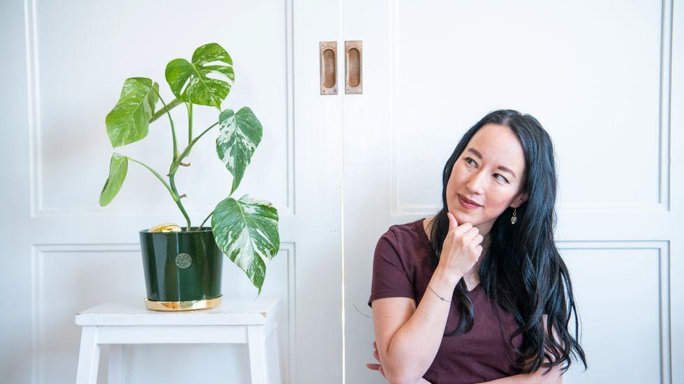 En dyrgrip  bland krukväxter. SvD:s Sara K Lindquist gick från växthatare till plantälskare – och skyller allt på pandemin.