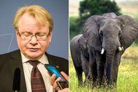Under Afrikaresan med regeringsplanet var Peter Hultqvist och medarbetarna från departementet på safari i naturreservatet Madikwe och övernattade på femstjärniga Tau Game Lodge.