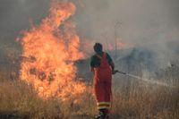 Det extrema högtrycket som plågade södra Italien i förra veckan fick öknamnet Lucifer. Höga temperaturer noterades i bland annat Sicilien, Sardinien och Kalabrien – som drabbats svårt av markbränder. Bilden är tagen nära Palermo på Sicilien.