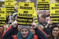 Antibrexitdemonstranter vid gränsen mellan Irland och Nordirland.