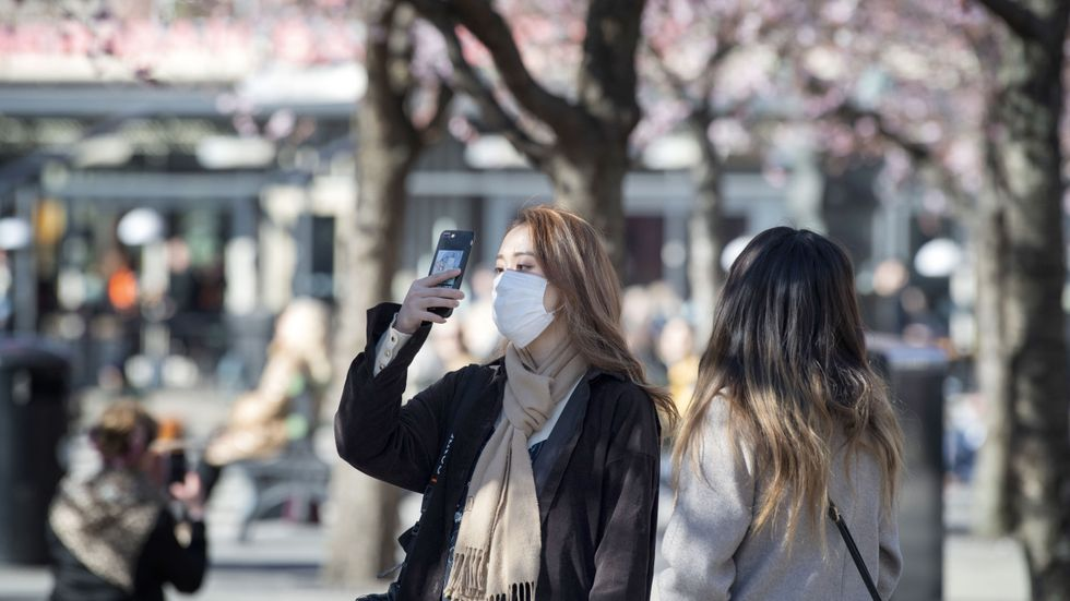 Selfie bland körsbärsblommorna i Kungsträdgården i mars 2020.