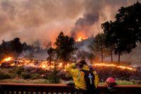 En brandman ser ut över lågorna i en grupp eldhärdar kallad LNU Lightning Complex, som har har vuxit till över 127000 hektar.