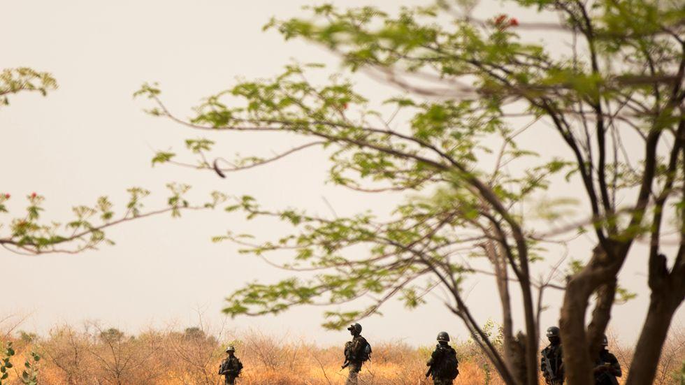 Specialstyrkor patrullerar i Kamerun. Arkivbild.