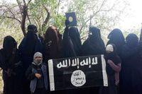 Personer från Sverige i Syrien.