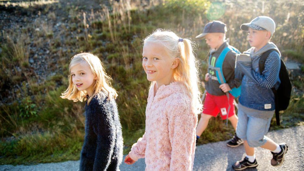 På Hörningsnässkolan i Huddinge  går många barn tillsammans till skolan. De kallar det vandrande skolbussar.