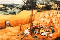 """Pieter Bruegels """"Skörden"""" från 1565."""
