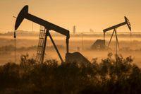 Oljepriset drabbades av ett historiskt ras under måndagen.