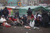 Migrantlägret på Sorgenfri i Malmö har börjat rivas.
