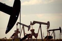 Oljepriset har pressats upp de senaste månaderna, men väntas sjunka igen. Arkivbild.