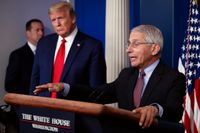 Smittskyddschefen Anthony Fauci på en presskonferens tillsammans med USA:s president Donald Trump. Arkivbild.