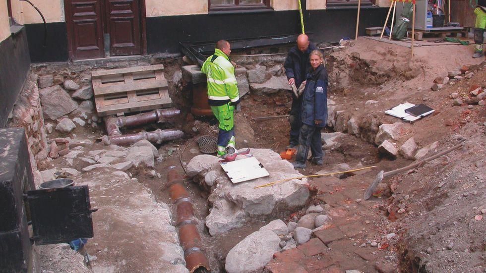 Vid en arkeologisk undersökning av dominikanerklostret i Gamla stan år 2010 identifierades flera växter, bland annat havre och råg.