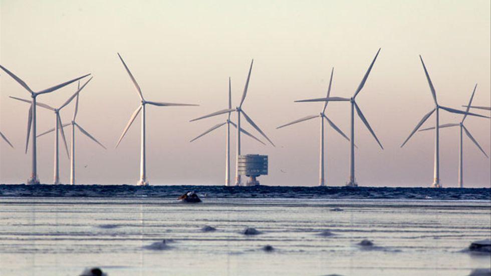 Vindskraftparken Lillgrund i Öresund söder om Malmö.