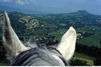För ryttaren tar det på musklerna att rida i fältsits i den kuperade terrängen. Ridcentret omges av Monte Amiatas höga toppar.