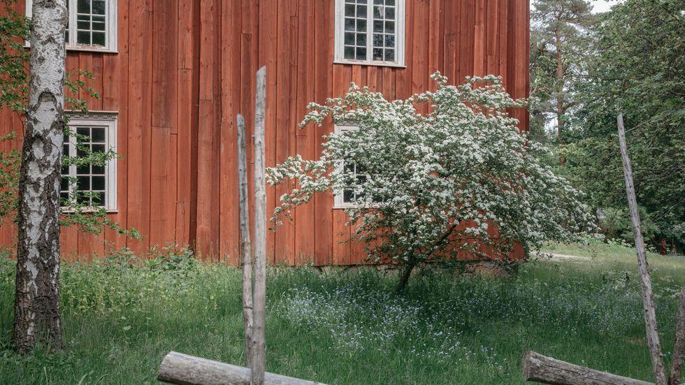 Synen på hembygden och urbaniseringen påverkar hur snabbt en dialekt förändras. Här Ekshäradsgården från Värmland på Skansen i Stockholm.