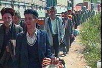 De av Srebrenicas män som inte flyr upp i bergen den 12 juli 1995 förs bort till ett uppsamlingsläger för att sedan avrättas.