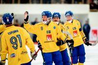 Bandy-VM ska hållas i Ryssland trots att landet är avstängda från stora mästerskap. Arkivbild.