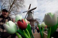 Fritt fram att resa till Nederländerna, enligt det svenska utrikesdepartementet. Arkivbild.