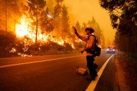 En brandman avfyrar gnistor för att tända en kontrollerad brand under den stora Creekbranden i Kalifornien den 6 september.
