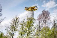 En Air Tractor AT-802 Fire Boss vattenbombar skogen under en övning med MSB och Kustbevakningen utanför Karlskrona i maj. Arkivbild.