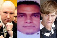 Anders Behring Breivik, Mohamed Lahouaiej Bouhlel och Dylann Roof.