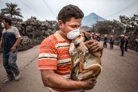 Foto: Luis Soto/AP