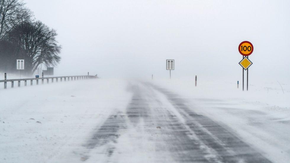 Moderaterna vill satsa en miljard på underhåll av vägarna 2022. Arkivbild.