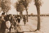 """Massdeportationen i västra Polen 1939 var en del av nazisternas """"etniska rensning""""."""
