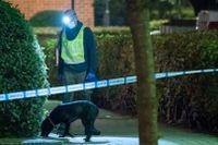 Polisens hundförare söker spår efter att en person hittats skottskadad på Docentgatan i Malmö för knappt tre veckor sedan.